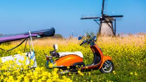 Ein Moped steht in Holland in einer Blumenwiese vor eine Mühle