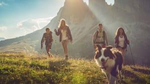 eine Gruppe junger Leute wandert mit ihrem Hund in den Bergen