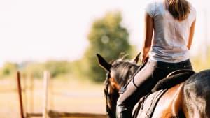 Eine Reiterin auf einem Pferd sitzend, von hinten fotografiert