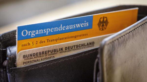 Organspendeausweis in einem Geldbeutel