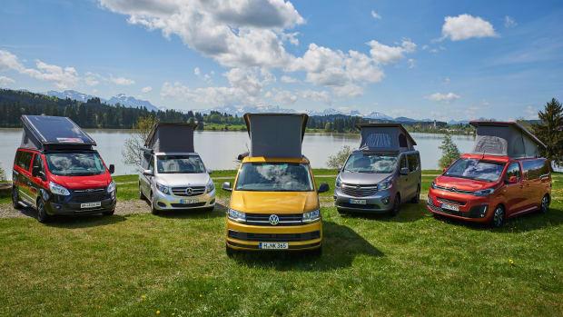 Fünf Campingbusse stehen auf einer Wiese