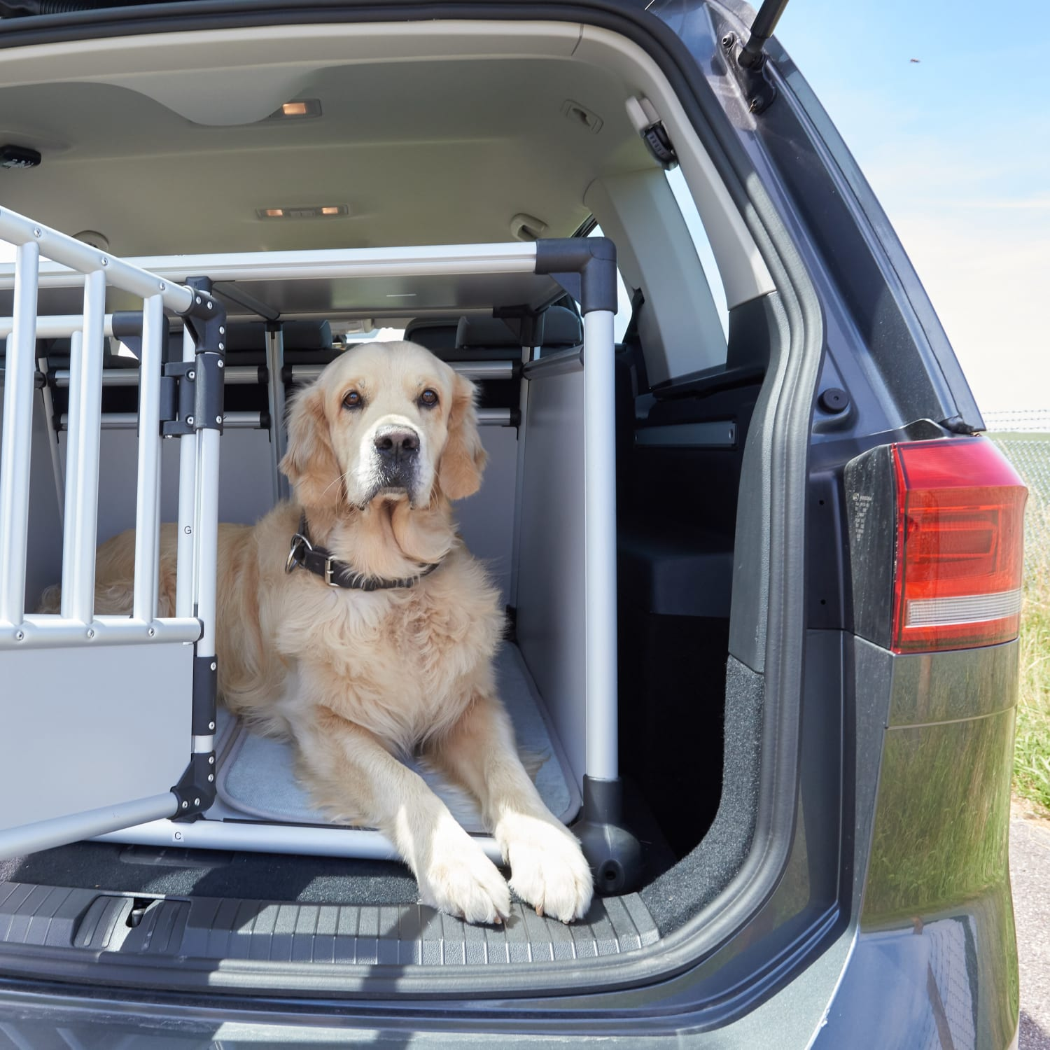 Hundetransport-Systeme fürs Auto