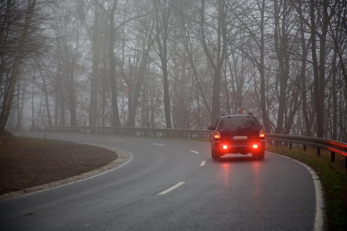 Auto fährt mit Nebelschlussleucht